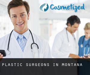 Plastic Surgeons in Montana