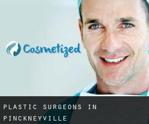 Plastic Surgeons in Pinckneyville