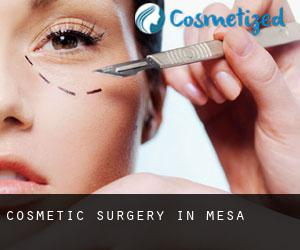 Cosmetic Surgery in Mesa