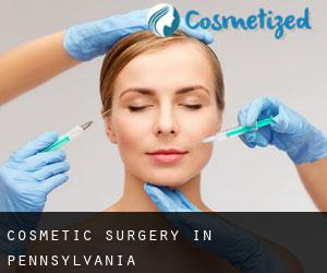 Cosmetic Surgery in Pennsylvania